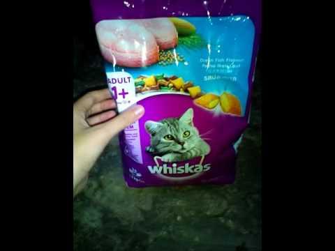 รีวิว หัวอาหารแมว🐱(whiskas)ทำไมน้องเหมียวถึงชอบกินจัง?