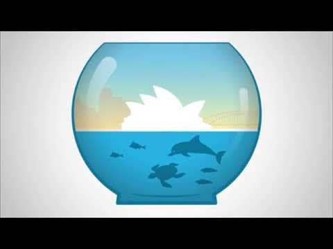 Why we need a Sydney Marine Park