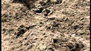 2l6 - Massacre Dans  Les Tranches - 1914-1918 La Grande Guerre En Couleur