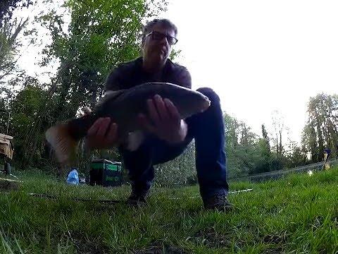 Method Feeder Fishing Tench
