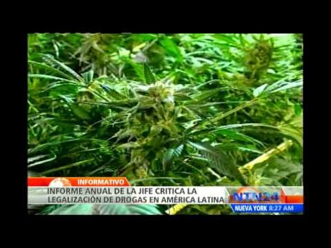 ONU exige a Perú mayores esfuerzos sobre control de drogas en América Latina
