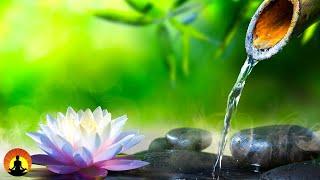 🔴 Relaxing Music For Quarantine 24/7, Meditation, Sleep Music, Healing Music, Study Music, Relax