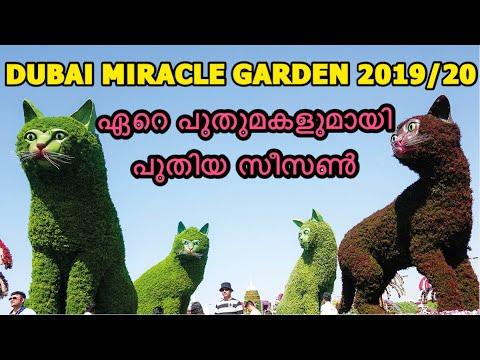 ഏറെ പുതുമകളുമായി പുതിയ സീസൺ !! | DUBAI MIRACLE GARDEN 2019-20