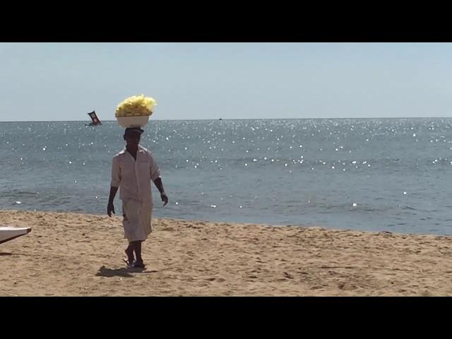Anasi Anasi Strand Sri Lanka