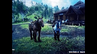 Red Dead Redemption 2 Iron Grey Roan Ardennes Speed,Stamina Test Max Bonding Arthur With Brown Jack