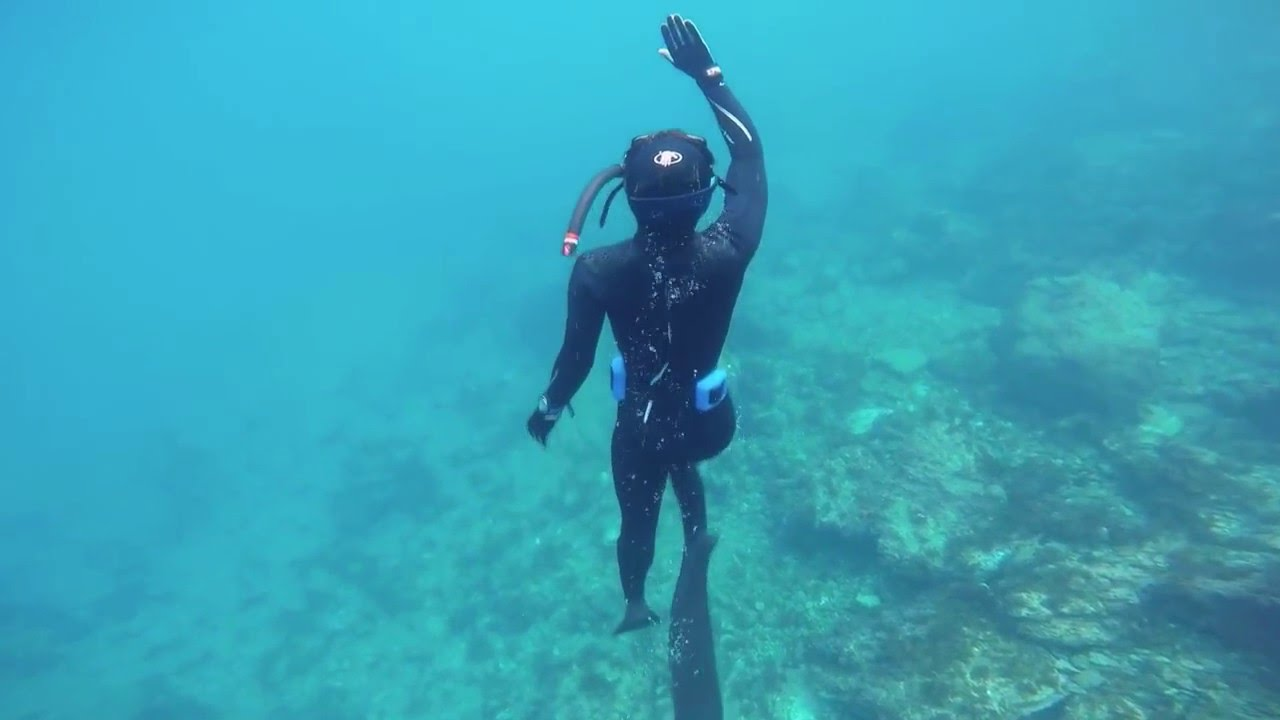 Naui Skin Diving Certification In Los Angeles Youtube