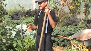 Compost   reteta rapida