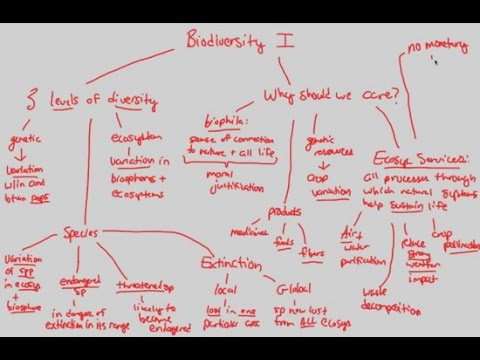 Conservation Biology - Biodiversity I