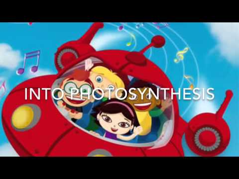 photosythesis song Video of the week - jam to the photosynthesis rap memorize this fun rap song and you will have all your photosynthesis facts at the tip of your tongue.
