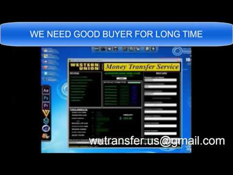 western union transfer bug software