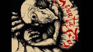SENATA FOX - Art Is Dead