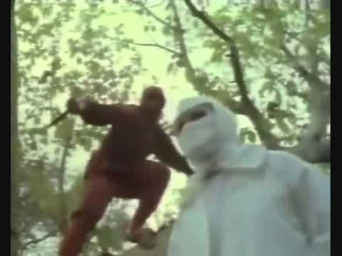 Enter The Ninja: Ninja Challenge