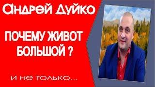 видео: ПОЧЕМУ ЖИВОТ БОЛЬШОЙ? Плохо работают почки, поджелудочная железа. Андрей Дуйко