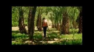Robert Plant - Morning Dew (Legendado)