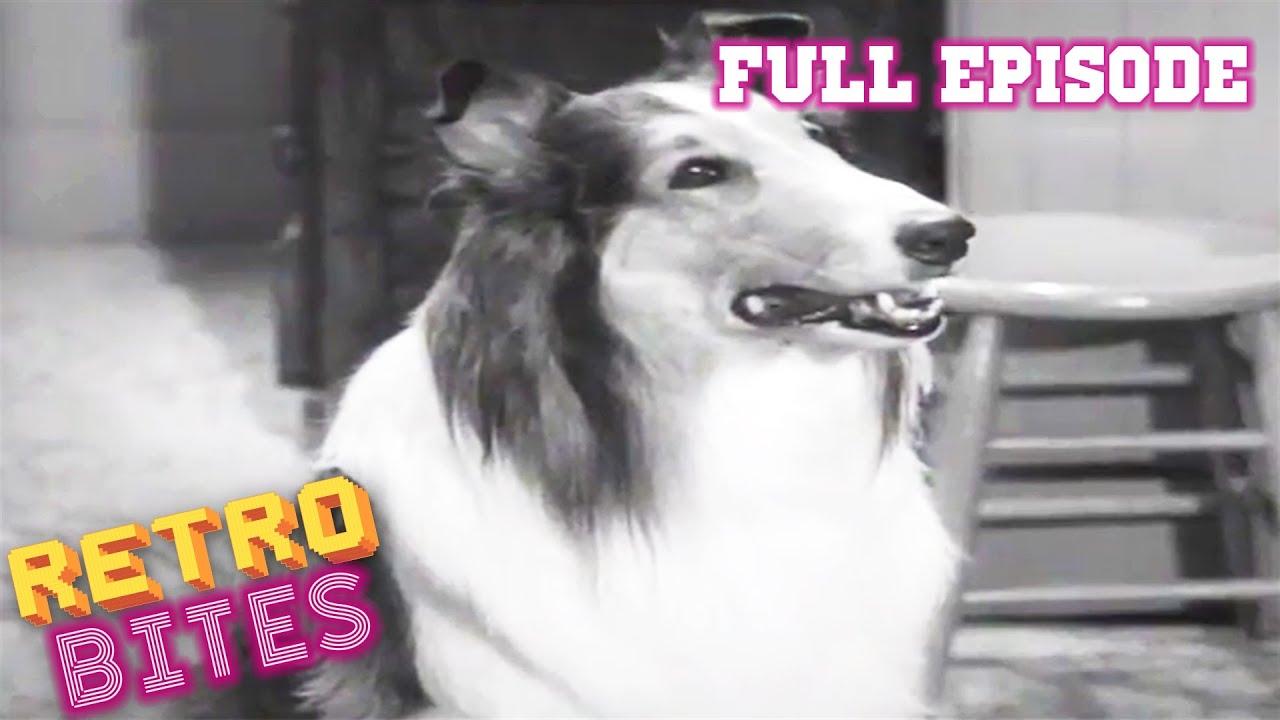 Youtube Lassie