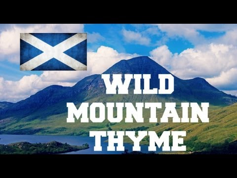 ♫ Wild Mountain Thyme - Sarah Calderwood ♫ LYRICS
