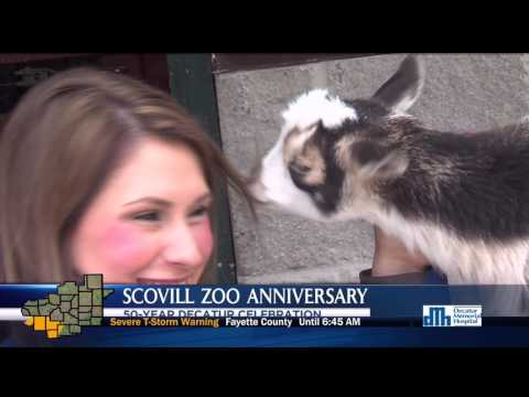 SCOVILL ZOO'S 50TH ANNIVERSARY