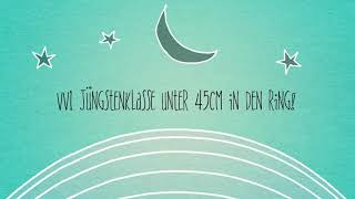 Ausstellung Sinsheim 27.08.2017