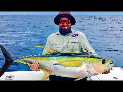 Yellowfin tuna an Mahi Mahi fishing in Vanuatu 2018