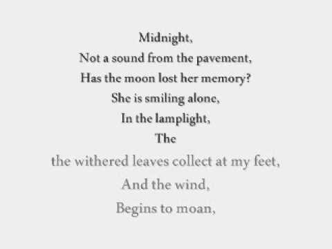 Memory Cats Lyrics Youtube
