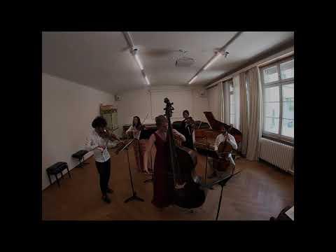 Václav (Wenceslav) Pichl Concerto In D Mov.1 Allegro Moderato