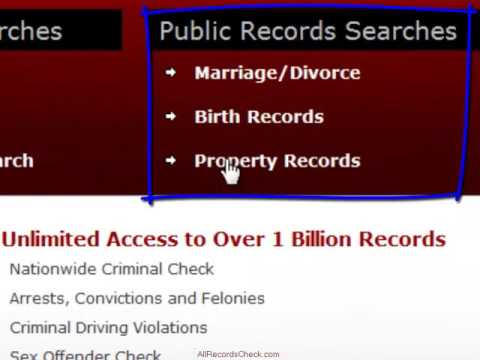 How to Check Duval County Public Records Online the Quickest Way