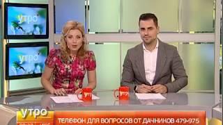Советы дачникам. Утро с Губернией. 26/05/2017. GuberniaTV