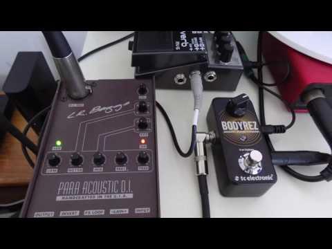 Yukinohana Guitar Solo - LR. Bagg Para Acoustic DI, Bodyrez, Boss RV-6