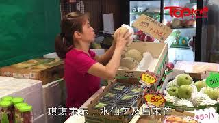 【TOPick話你知】芒果5月成熟時 水仙芒 VS 呂宋芒甜味大不同