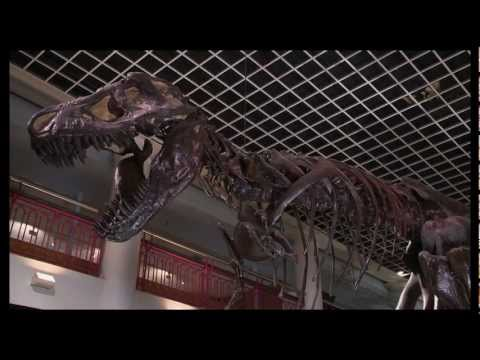 DNews at the Academy of Natural Sciences of Drexel University (HD Version)