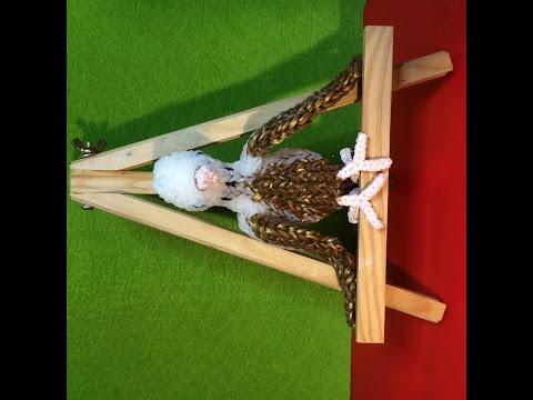 Rainbow Loom 3D Sittich - Teil 1 - von Lachtäubchen Loom