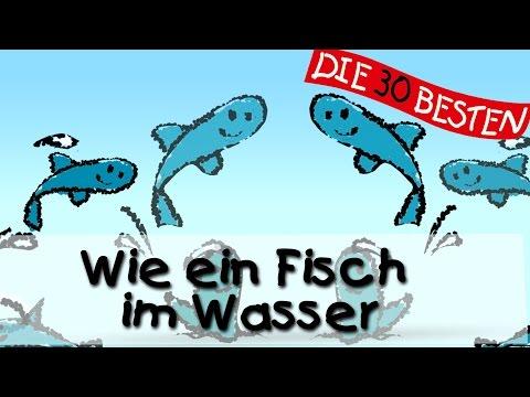 Wie ein Fisch im Wasser - Die besten Mutmacherlieder    Kinderlieder