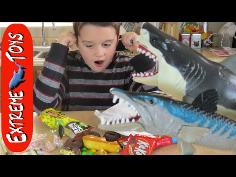 """Megalodon Shark Toy Goes Crazy and Eats all the Candy! """"Shark and Barracuda Toy"""""""