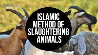 BLOOD-THIRSTY MUSLIMS