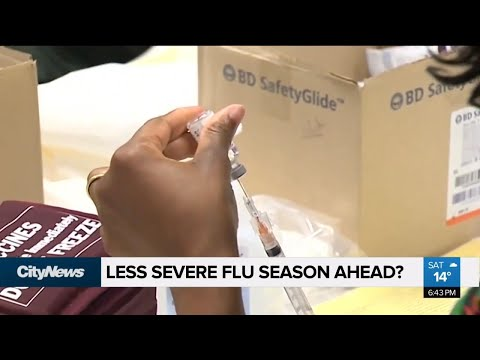 Canada Is In For A Less Severe Flu Season: Experts