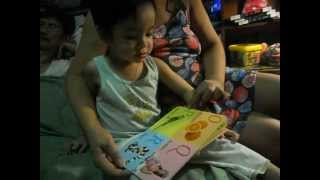 23 month old boy knows the alphabet