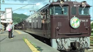 JR 中央本線 イベント列車 旧型客車 かもしか号 茶ガマ EF64 プッシュプル 光panasd 31