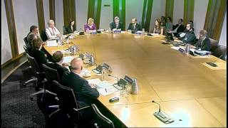 Delegated Powers and Law Reform Committee - Scottish Parliament: 29th October 2013