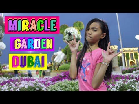 Dubai Miracle Garden | The world's largest natural flower garden.