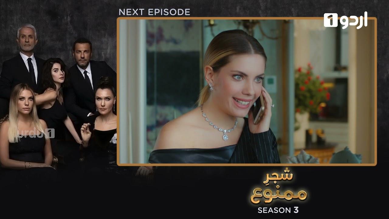 Shajar-e-Mamnu | Episode 225 Teaser |Turkish Drama| Forbidden Fruit |Urdu Dubbing| 19 October 2021