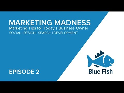 Facebook Algorithms | An overview of how they work | Blue Fish a Marketing Agency