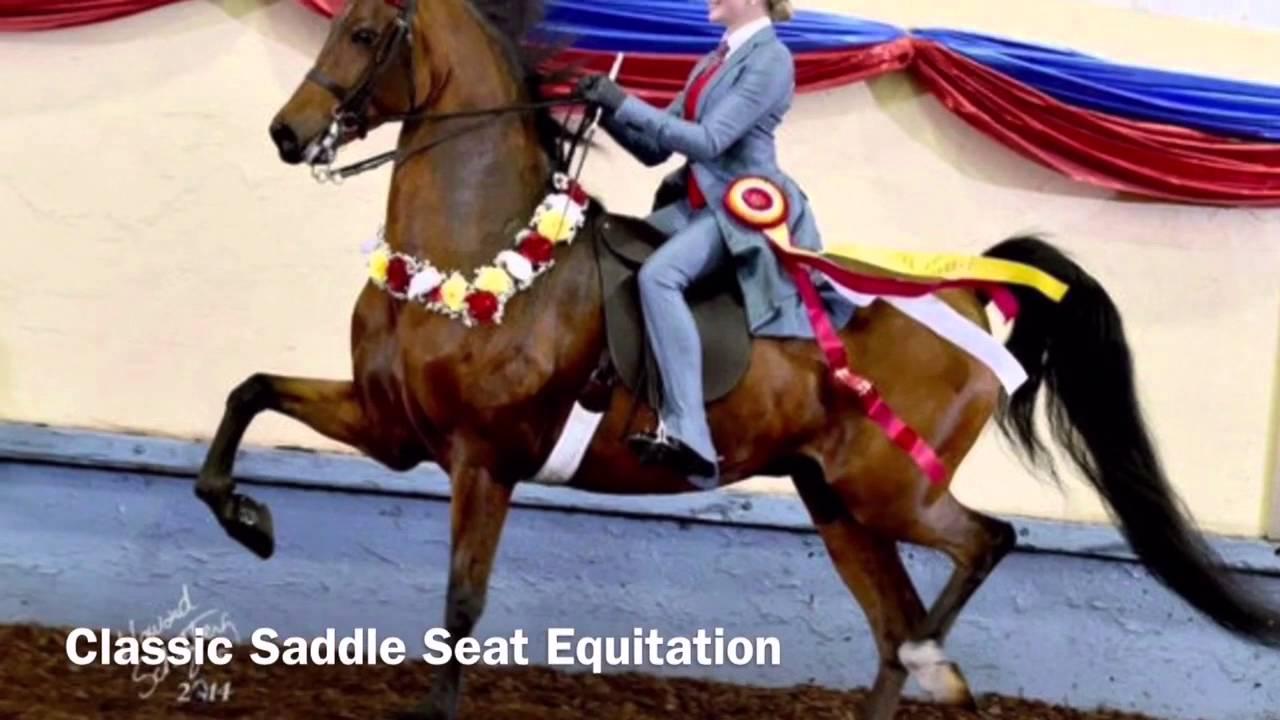 Major U S Equitation Finals The Saddle Seat Equitation Triple