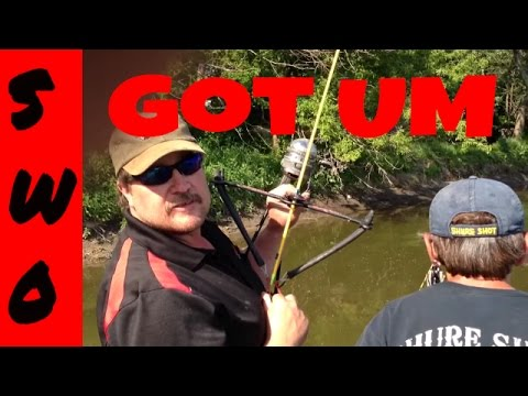 Bowfishing Grass Carp With The Magnum Bowfisher Slingbow
