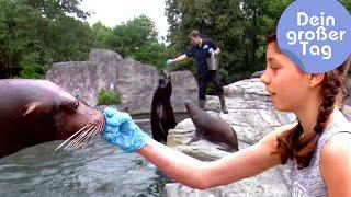 Als Tierpfleger im Zoo - Mara und die Tiere | Dein großer Tag | SWR Kindernetz