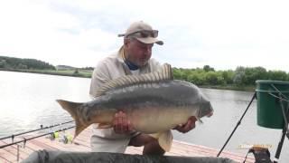 Достаем КРУПНОГО зеркального карпа на 16 кг... Вываживание и ловля карпа... Рыбалка в Украине.