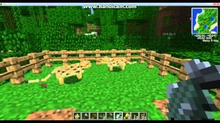 как приручить и размножить диких кошек в minecraft
