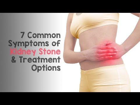 Symptoms of Kidney Stone Dr. Nicholas Laryngakis