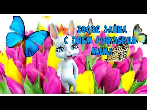 Zoobe Зайка -  С днем рождения, Мама! - Как поздравить с Днем Рождения