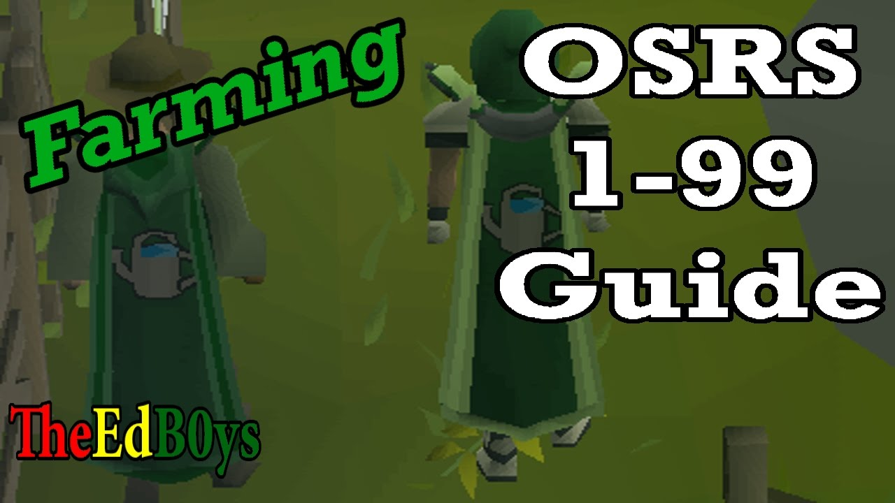 1-99 mining guide osrs