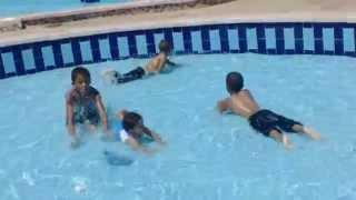مرحلة البلوغ العديد من متهور اجمل مسبح اطفال Continental Bulldog Zucht Com
